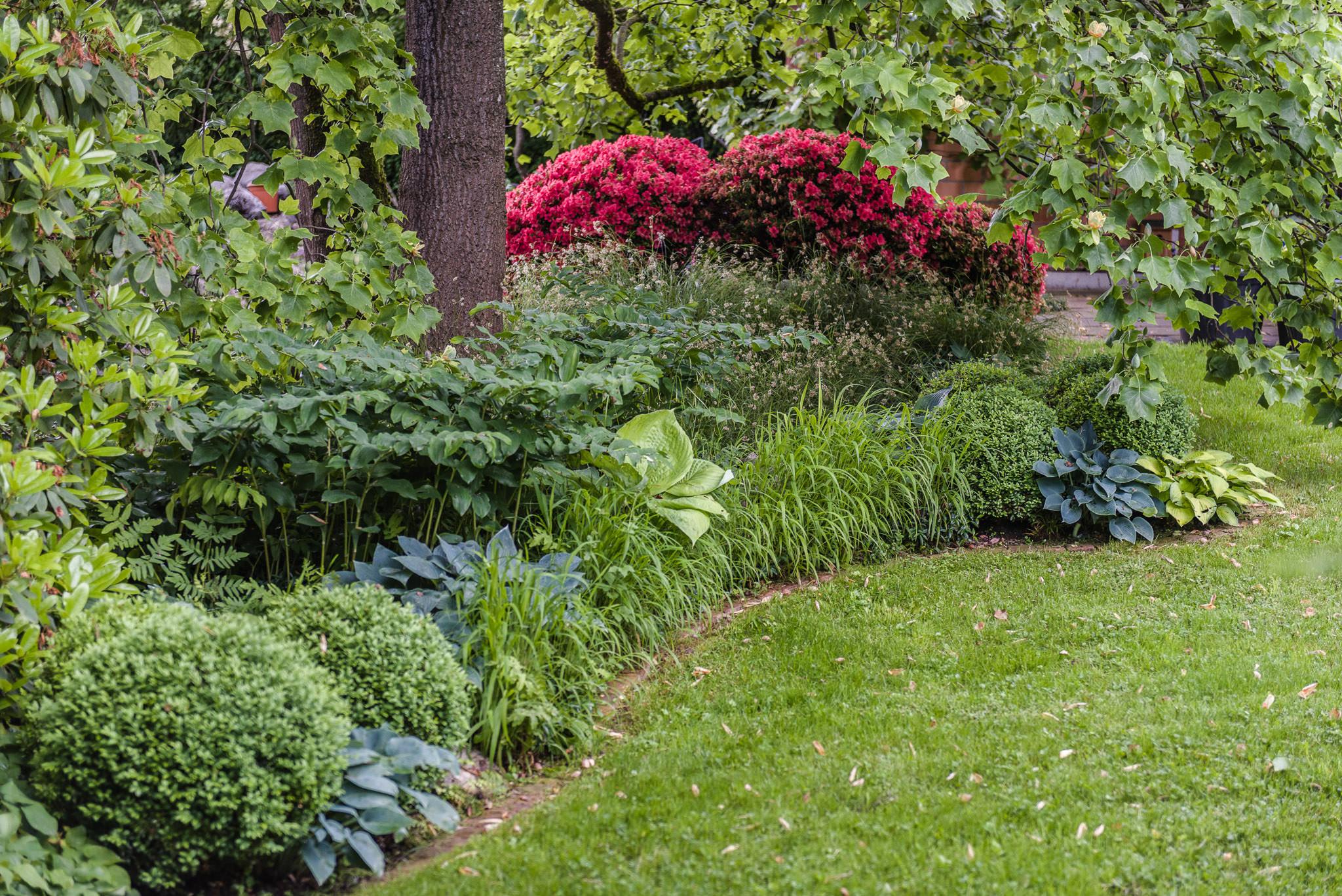 Englischer garten terza natura gartenjuweliere for Gartengestaltung rhododendron