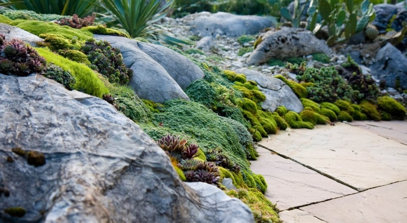 gartengestaltung-mediterran-steingarten-zuerich-2091