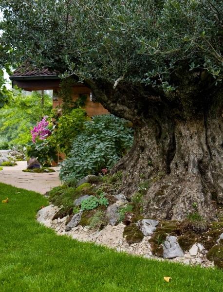 gartengestaltung-mediterran-steingarten-zuerich-3781