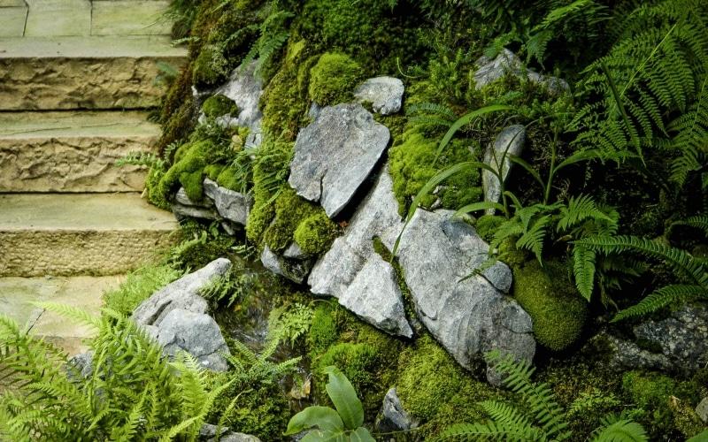 gartengestaltung-alpin-steingarten-zuerich-3