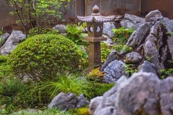 gartengestaltung-japanisch-laterne-azalee-sazuki-natursteine-zuerich-6446