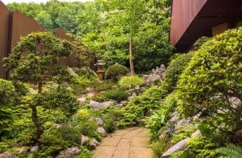 gartengestaltung-japanisch-laterne-azalee-sazuki-natursteine-zuerich-6485