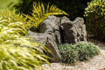 gartengestaltung-steingarten-japanisch-zurich-zug-luzern_0563