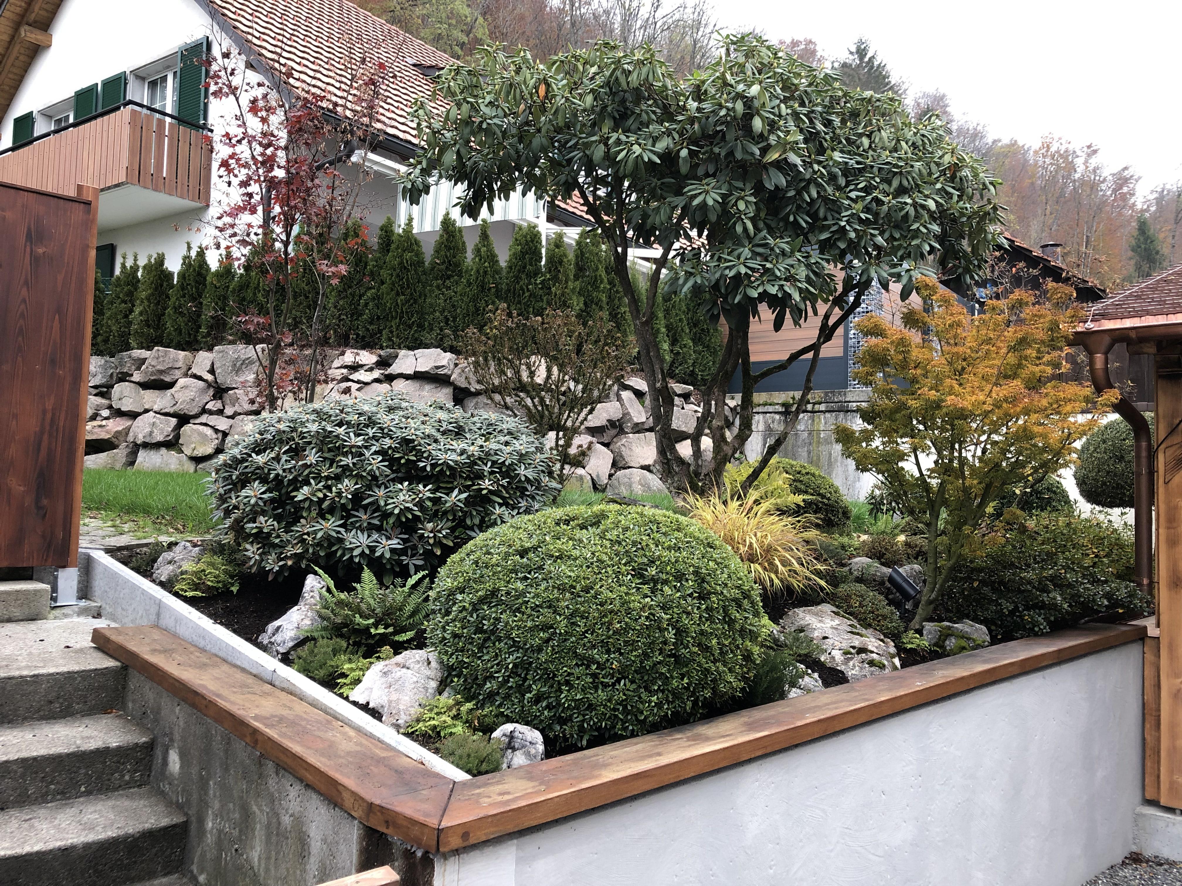 gardendesign-rhododendron-azalee-japanisch-steingarten-zug-zuerich