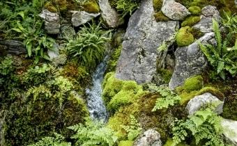 gartengestaltung-alpin-steingarten-zuerich-14