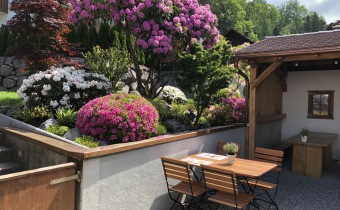 gartengestaltung-japanisch-azaleen