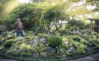 gartengestaltung-steingarten-zurich-zug-luzern_3620